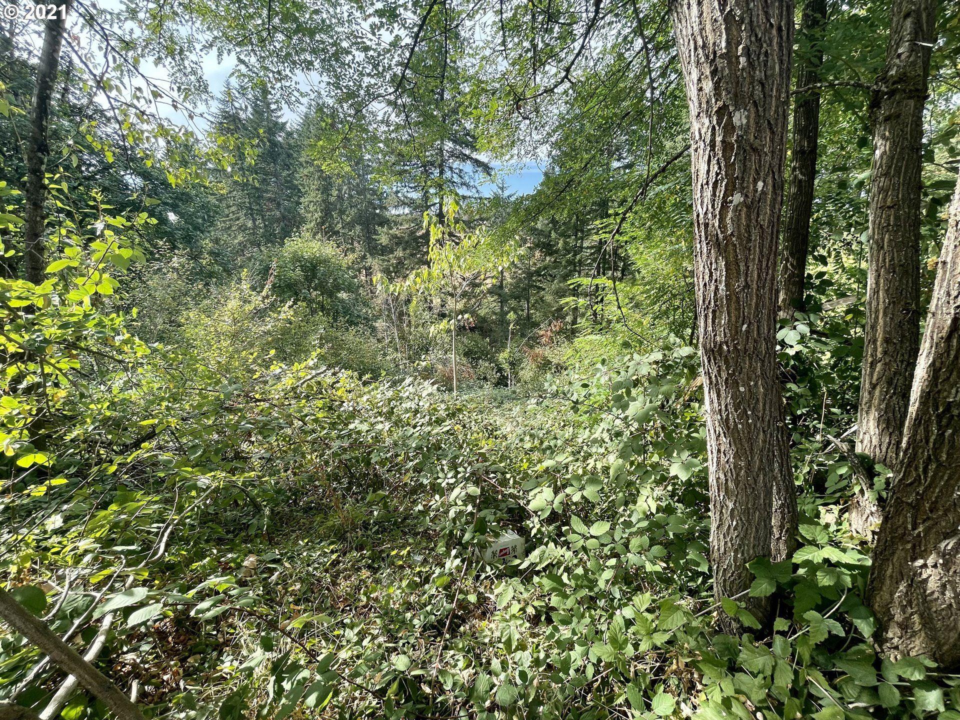 Photo of 17455 S BRADLEY RD, Oregon City, OR 97045 (MLS # 21337362)