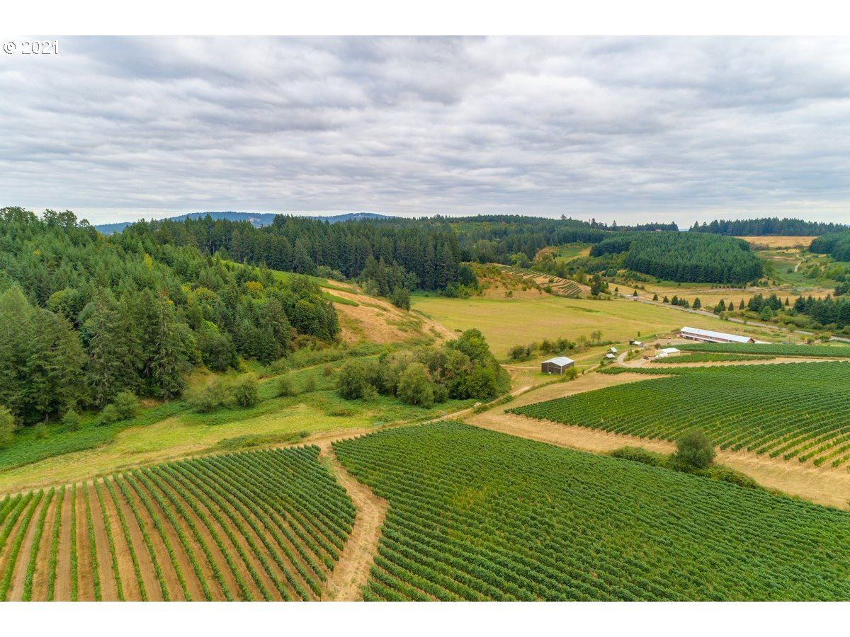 Photo of 11711 NE HIGHWAY 240, Yamhill, OR 97148 (MLS # 21566373)