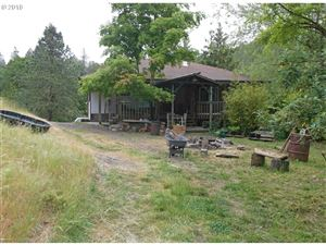 Photo of 693 HOOVER HILL RD, Winston, OR 97496 (MLS # 18356412)