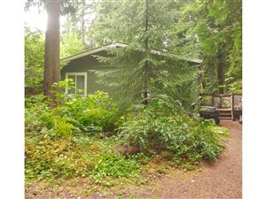 Photo of 69300 E VINE MAPLE DR, Welches, OR 97067 (MLS # 19533432)