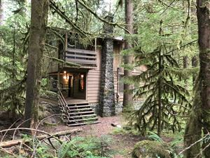 Photo of 27068 E ROAD 14, Rhododendron, OR 97049 (MLS # 19511468)