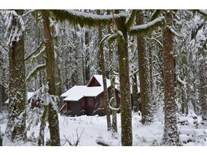 Photo of 26497 E HENRY CREEK RD, Rhododendron, OR 97049 (MLS # 19365469)