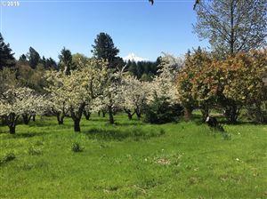 Photo of 849 Grange View PL, White Salmon, WA 98672 (MLS # 18068486)