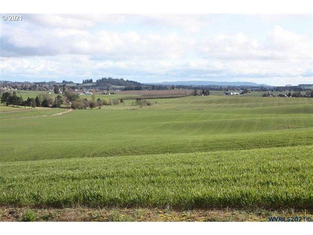 Photo of 20275 NW BISHOP SCOTT RD, Yamhill, OR 97148 (MLS # 21512487)