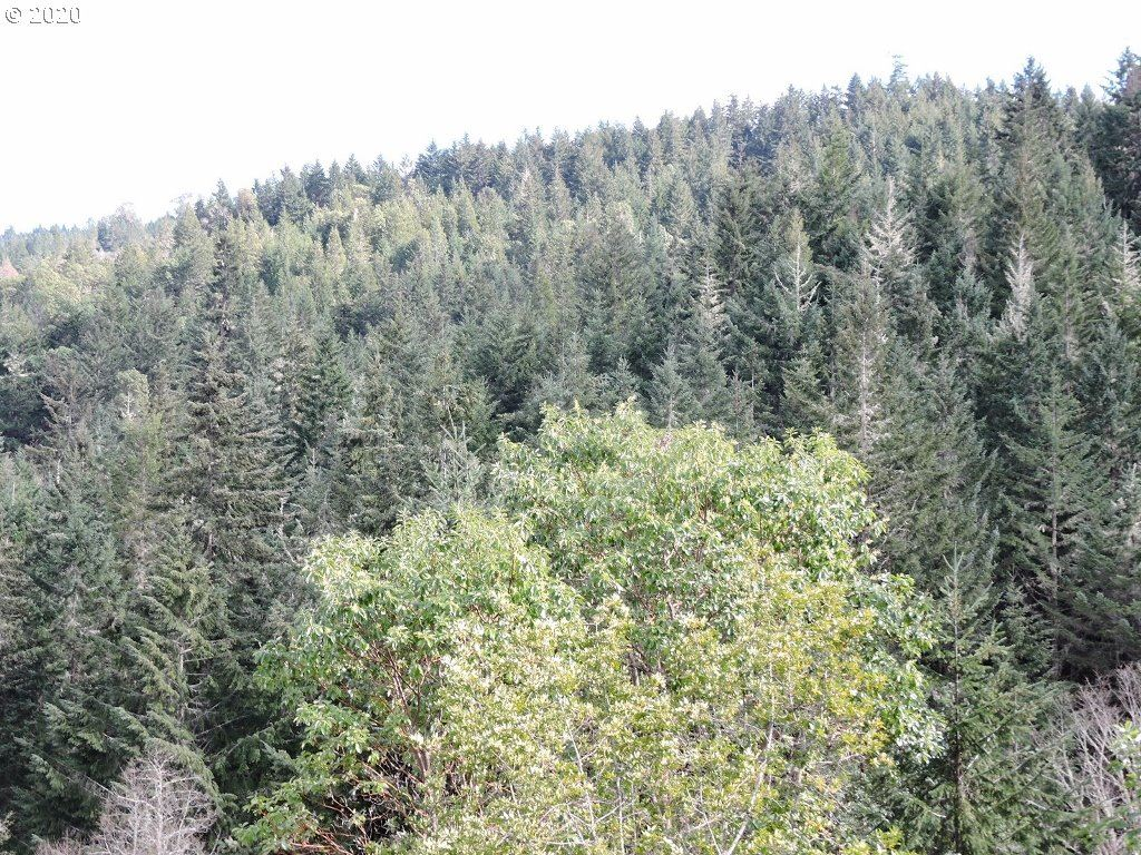 0 BOOMER HILL RD #200, Myrtle Creek, OR 97457 - MLS#: 20210496