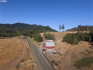Photo of 4967 OLALLA RD, Winston, OR 97496 (MLS # 17478497)