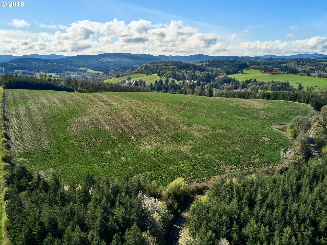 Photo of 0 Gerrish Valley RD, Yamhill, OR 97148 (MLS # 21560500)