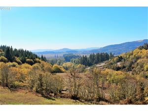 Photo of Wallace Creek RD 2 #2, Pleasant Hill, OR 97455 (MLS # 19263523)
