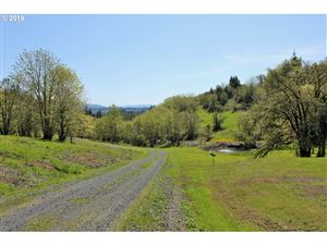 Tiny photo for Wallace Creek RD 2, Pleasant Hill, OR 97455 (MLS # 19263523)