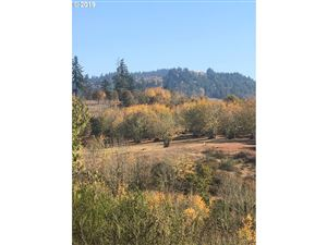 Tiny photo for Wallace Creek RD 2 #2, Pleasant Hill, OR 97455 (MLS # 19263523)