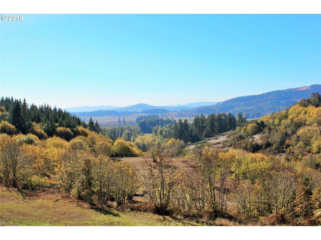 Photo for Wallace Creek RD 2, Pleasant Hill, OR 97455 (MLS # 19263523)