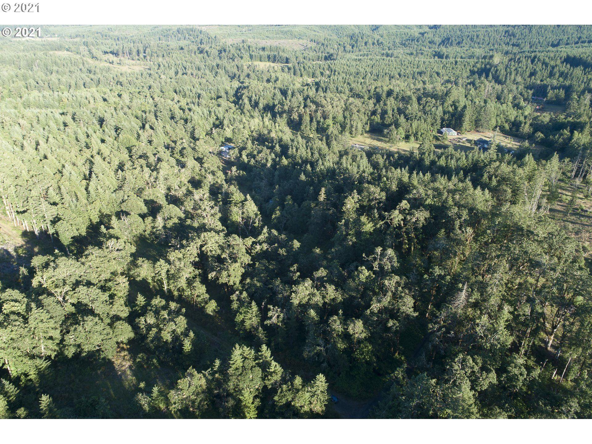 Photo of Sheridan View Acres, Sheridan, OR 97378 (MLS # 21309528)