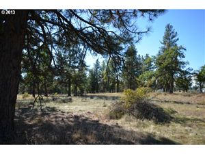 Photo of S Louisa RD, Wamic, OR 97001 (MLS # 16534581)