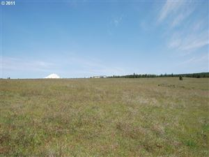 Photo of Bronco WAY 10, Goldendale, WA 98620 (MLS # 11626583)