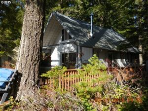 Photo of Cabin 11 Northwoods, Cougar, WA 98616 (MLS # 15557622)