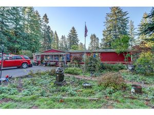Photo of 1506 NE 242ND AVE, Camas, WA 98607 (MLS # 19463636)