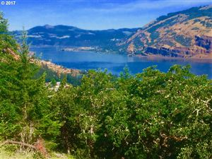 Photo of 525 BLANCHARD BLVD, Mosier, OR 97040 (MLS # 18458647)