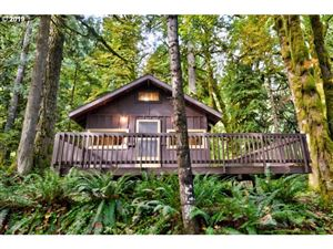Photo of 27149 E ROAD 12A Lot 6, Rhododendron, OR 97049 (MLS # 19090692)