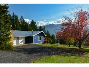 Photo of 1892 LOOP RD, Stevenson, WA 98648 (MLS # 18644762)