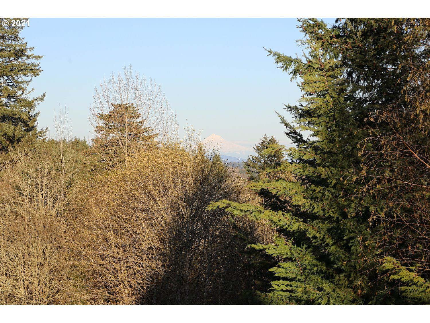 Photo of 3533 Hoodview DR #31, Forest Grove, OR 97116 (MLS # 21056769)