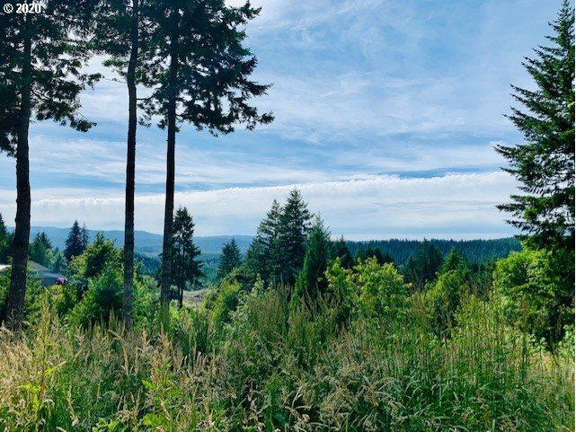 Photo of 45539 NW MEAD WAY, Banks, OR 97106 (MLS # 21305806)