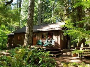 Photo of 78684 E ROAD 35A Lot24, Government Camp, OR 97028 (MLS # 19168807)