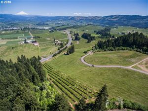 Photo of 4245 HWY 35, Hood River, OR 97031 (MLS # 16272859)
