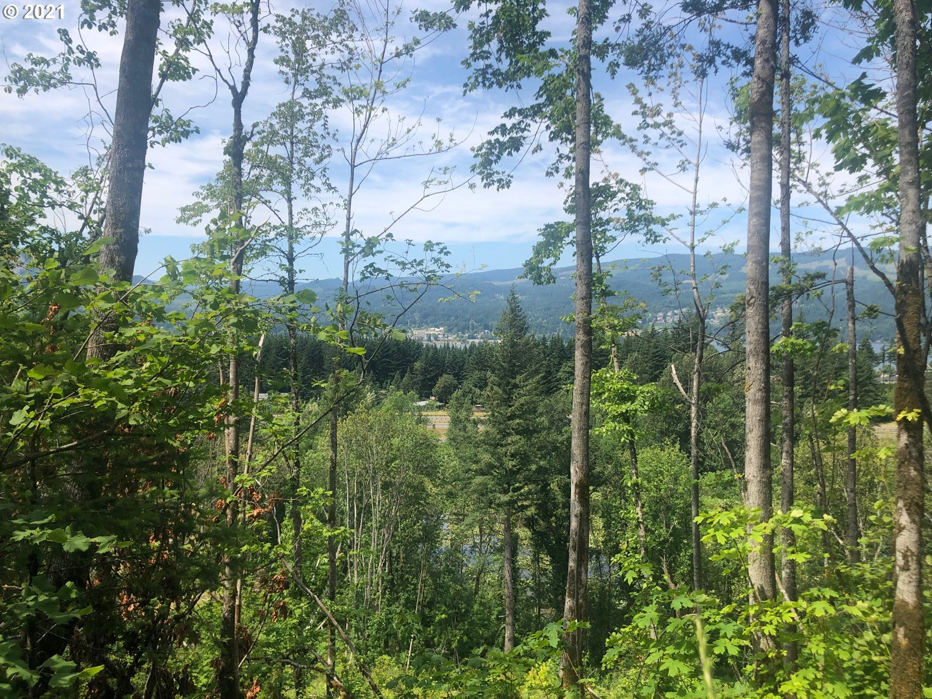 740 FRONTAGE RD, Cascade Locks, OR 97014 - #: 21554894
