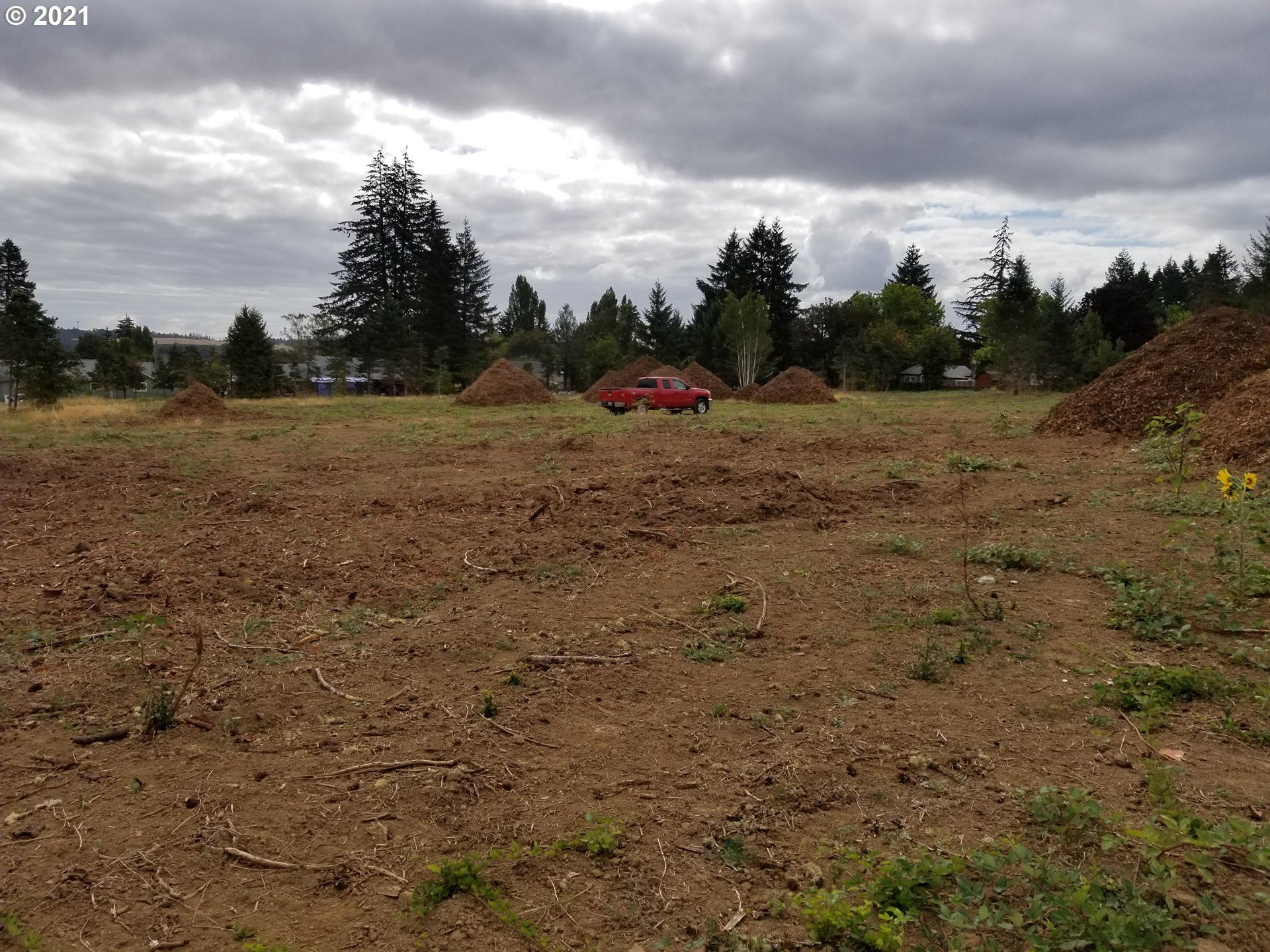 Photo of Pioneer DR, Willamina, OR 97396 (MLS # 21215899)