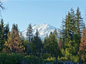 Photo of 1 Byrkett RD, Trout Lake, WA 98650 (MLS # 18234946)