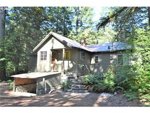 Photo of 72641 E HIGHWAY 26, Rhododendron, OR 97049 (MLS # 19508965)