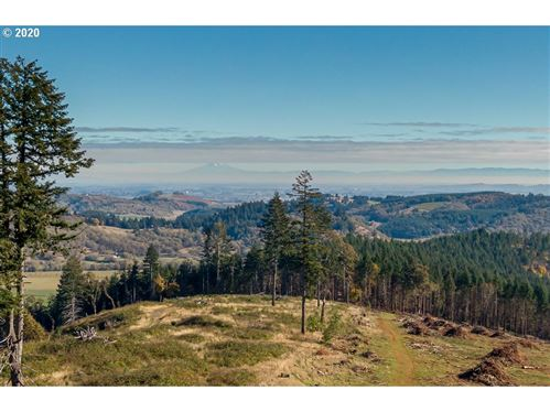 Photo of 13479 SW Dupee Valley RD #TL500, Sheridan, OR 97378 (MLS # 20655998)