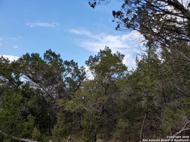 Photo of 717 FIREFLY DR, Canyon Lake, TX 78133 (MLS # 1510414)