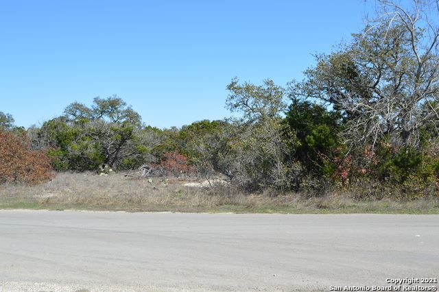 Photo of 20344 CR 174, Helotes, TX 78023 (MLS # 1559484)