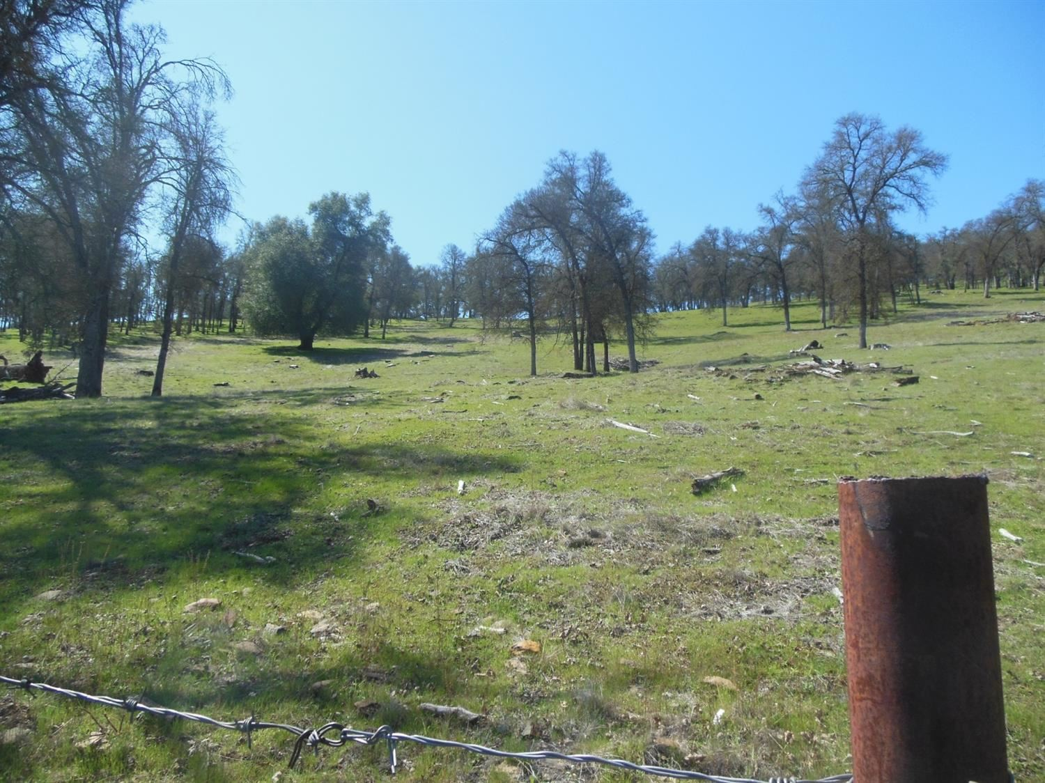 Photo of 6626 Pool Station Road, Angels Camp, CA 95222 (MLS # 221019352)