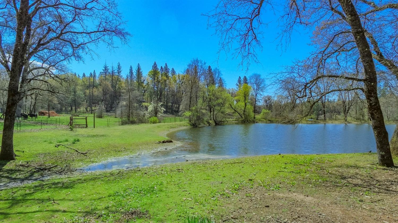 Photo of 2006 Red Road, Garden Valley, CA 95633 (MLS # 221037741)