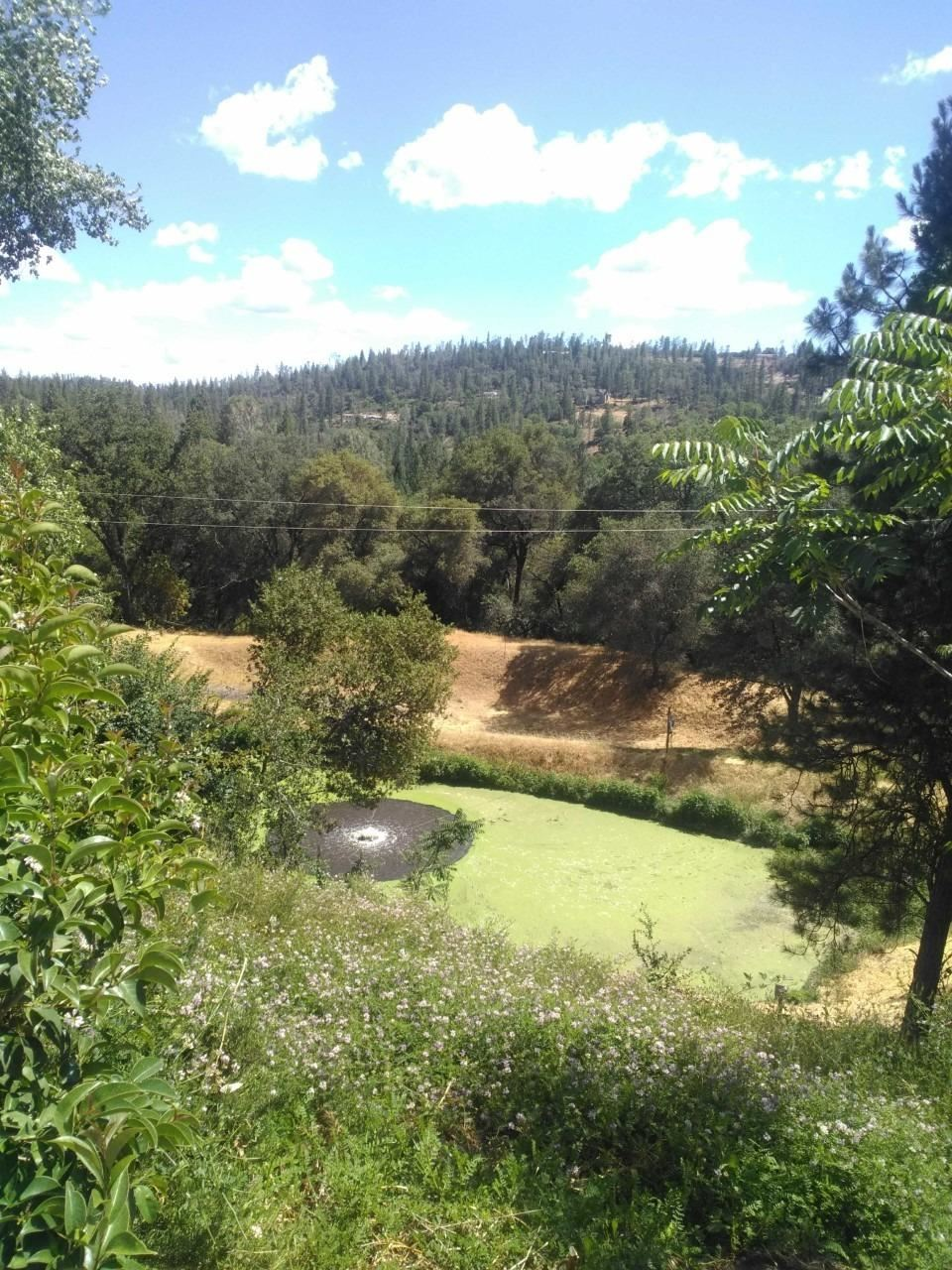 14533 Rough & Ready Highway #D, Rough and Ready, CA 95975 - MLS#: 221056801