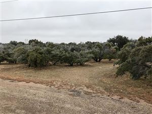 Photo of 16906 Encino Court, Christoval, TX 76935 (MLS # 94052)