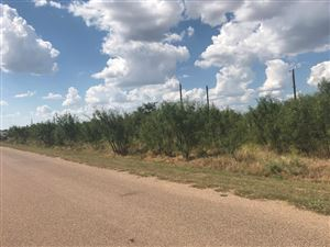 Photo of 10536 Wheatland Dr, San Angelo, TX 76901 (MLS # 99193)