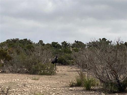 Tiny photo for 3422 County Rd 406, Ozona, TX 76943 (MLS # 104203)