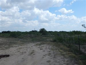 Photo of 0 County Rd 414, Eldorado, TX 76936 (MLS # 84377)