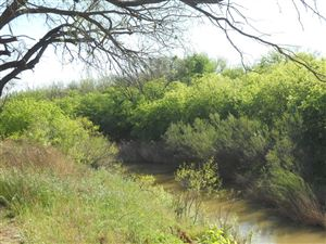 Photo of 367 Private Rd 2884, Ballinger, TX 76821 (MLS # 97526)