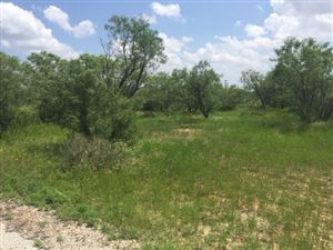 Photo of 0 Country Club Rd, Ballinger, TX 76821 (MLS # 88639)