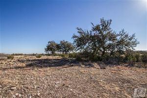 Photo of 16670 Vaquero Trail, Christoval, TX 76935 (MLS # 93693)