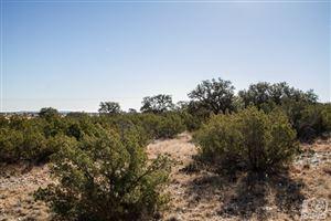 Photo of 17020 Vaquero Trail, Christoval, TX 76935 (MLS # 93695)