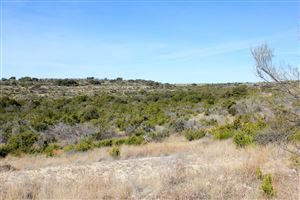 Photo of 105 Shepherds Trail, Ozona, TX 76943 (MLS # 96791)