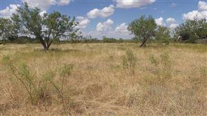 Photo of 360 County Road 2883, Ballinger, TX 76821 (MLS # 98909)