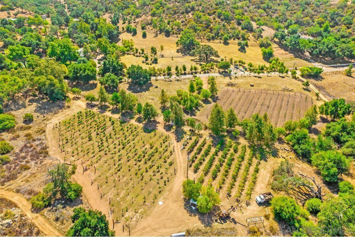 Photo of 18155 Lyons Valley Rd, Jamul, CA 91935 (MLS # 210029239)