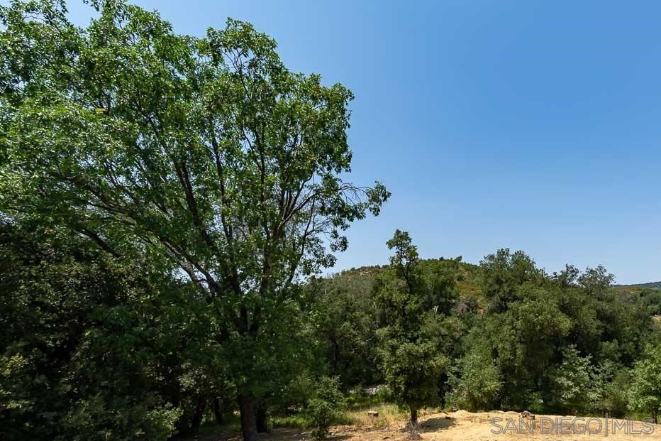 Photo of 7065 Sandy Creek, Julian, CA 92036 (MLS # 210020250)