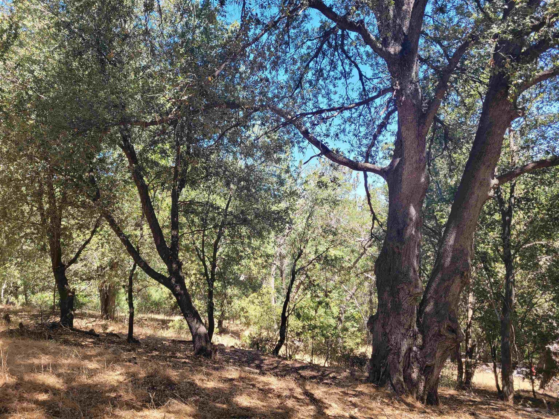 Photo of Pine Hills Rd, Julian, CA 92036 (MLS # 210025343)